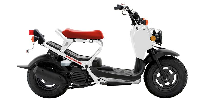 2019 Honda Ruckus Base