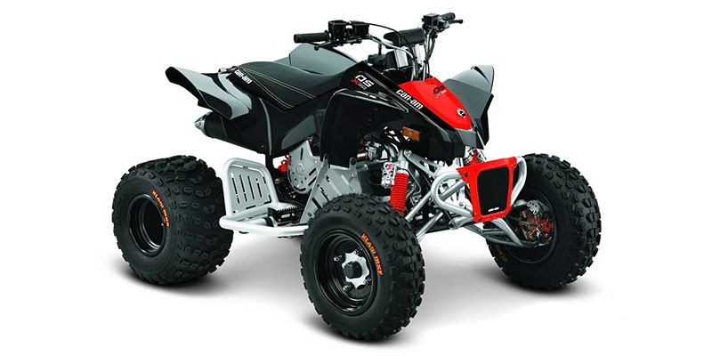2020 Can-Am DS 90 X